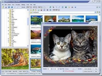 FastStone Image Viewer 3.1 Beta 3