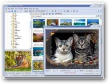FastStone Image Viewer 3.2