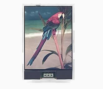 Japan Display подготвя цветен екран тип електронна хартия